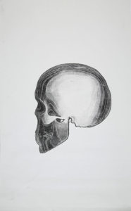 skull-on-canvas